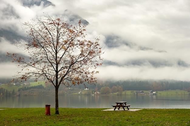 Paesaggio lunatico autunnale con albero spoglio e panchina solitaria sulla riva del lago di montagna.