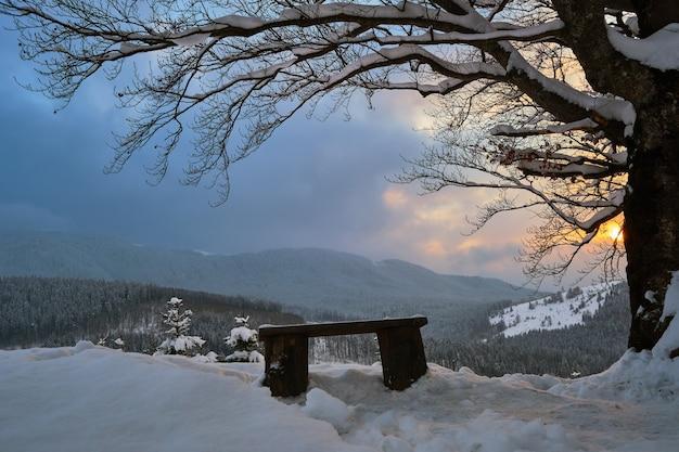 Paesaggio invernale lunatico con albero nudo scuro e piccola panca di legno coperta da un campo di neve fresca caduta in montagne invernali in una fredda sera cupa.