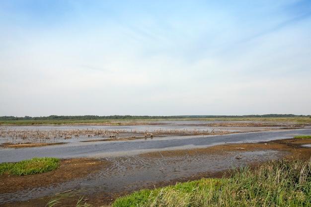 Moorland nel periodo estivo