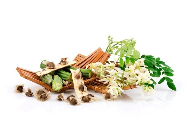 Moringa foglie verdi, semi e fiori isolati su bianco.