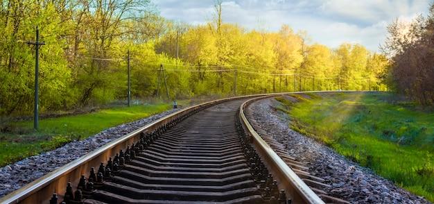 Paesaggio mattutino sui binari ferroviari. raggi di sole, erba verde e foglie gialle sugli alberi su cui si muove il treno.