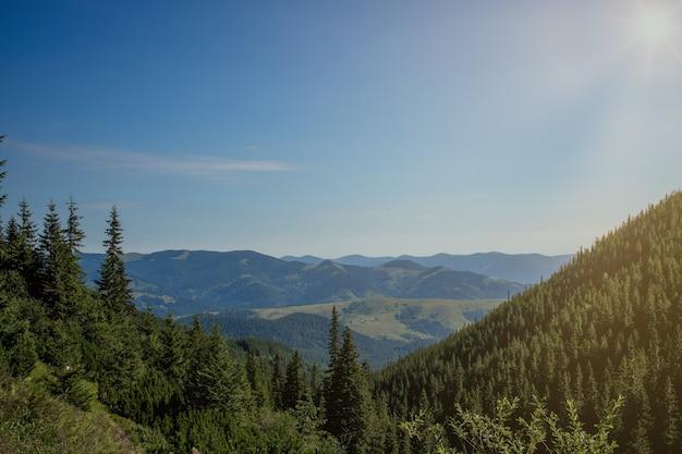 La giornata di sole mattutina è nel paesaggio di montagna. carpazi, ucraina, europa. mondo della bellezza. grande risoluzione.