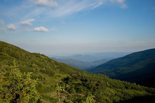 La giornata di sole mattutina è nel paesaggio di montagna.
