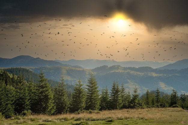 La giornata di sole mattutina è nel paesaggio di montagna