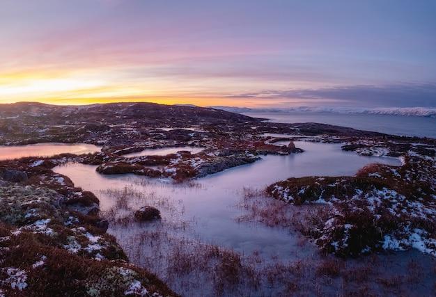 Vista la mattina di una bella pozzanghera ghiacciata e muschi sul roc