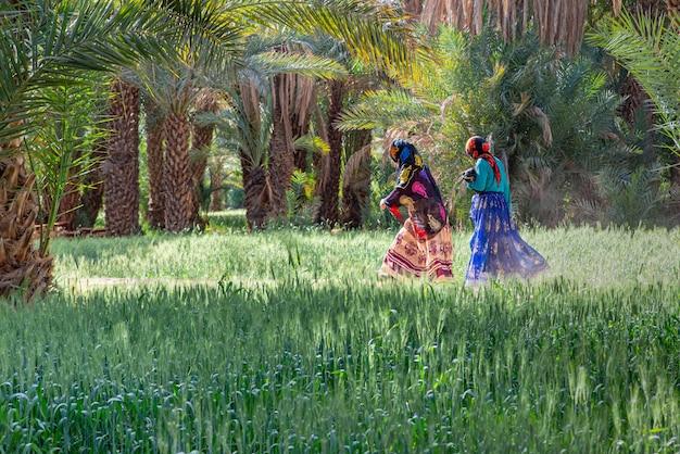 Donne marocchine che camminano lungo la strada con le palme