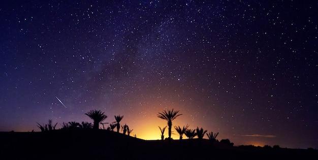 Cielo notturno stellato del deserto del sahara del marocco sopra l'oasi