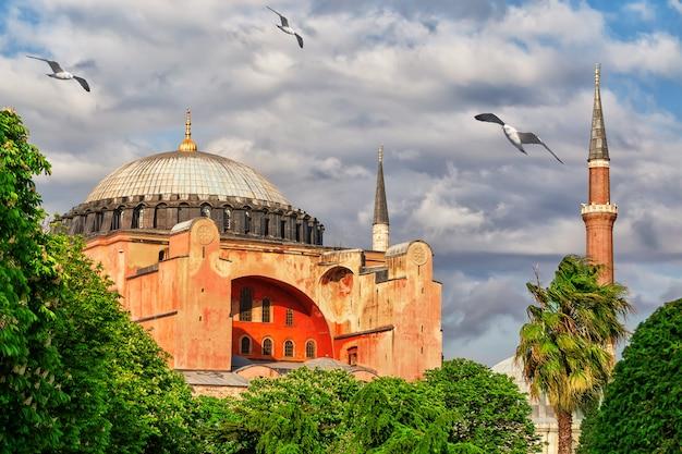 Moschea hagia sophia a istanbul, turchia