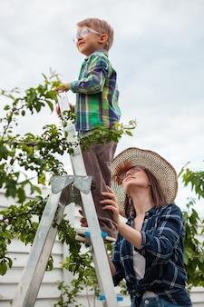 Madre e bambino sull'albero della scala, giardinaggio nel giardino del cortile