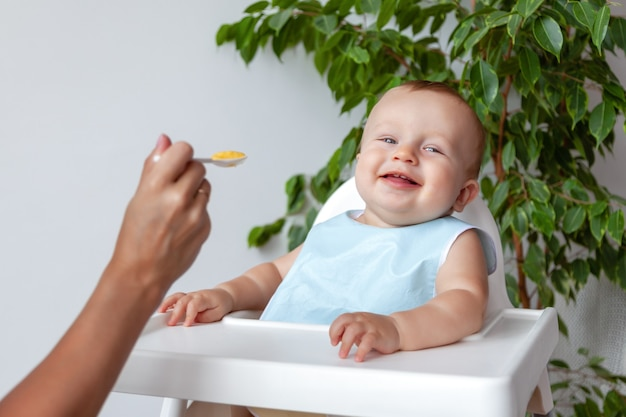 Madre alimenta ridendo felice bambino biondo in bavaglino blu da un cucchiaio, si siede su un seggiolone, muro bianco e foglie verdi sfondo, copia spazio, orizzontale