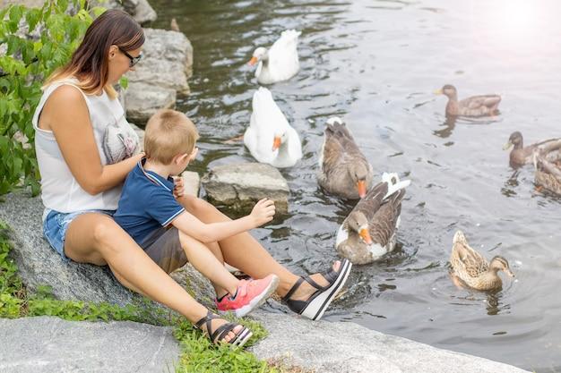Madre e figlio danno da mangiare alle oche nello stagno