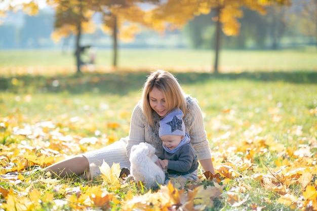 Generi ed il suo bambino sveglio nel parco di autunno che gioca con il piccolo cucciolo.