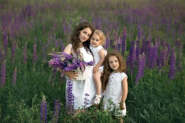 Una madre con due figlie in un campo di lupini in fiore raccoglie fiori in un cesto.