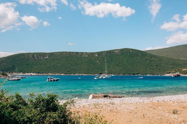 Le barche a motore navigano lungo la costa del mare contro le montagne l'albatro svetta nel cielo