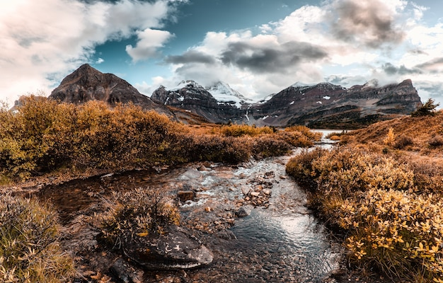 Mount assiniboine con il flusso che scorre nella foresta di autunno al parco provinciale, bc, canada