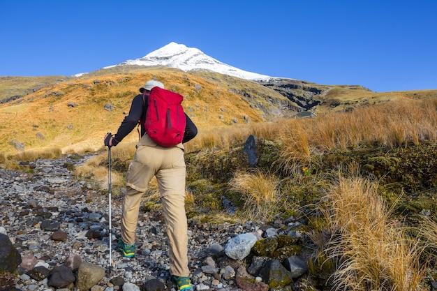 Mount taranaki / mount egmont nel parco nazionale di egmont, isola del nord, nuova zelanda. bellissimi paesaggi naturali