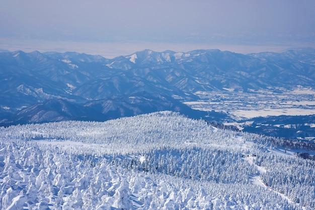 Monte zao nella stagione invernale. gli alberi innevati, la gente del posto li chiama mostri di neve. prefettura di yamagata, giappone.