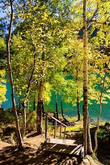 Lago siberia verde di autunno della montagna con la riflessione, la betulla e la scala di legno