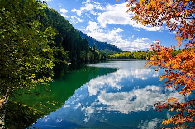 Lago siberia verde di autunno della montagna con la riflessione e la sorba rossa