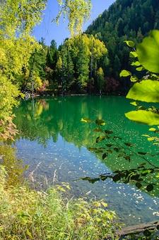 Lago siberia verde di autunno della montagna con la riflessione