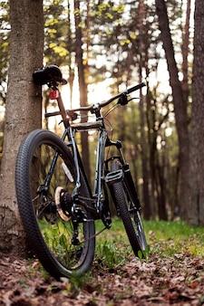 Mountain bike nella foresta
