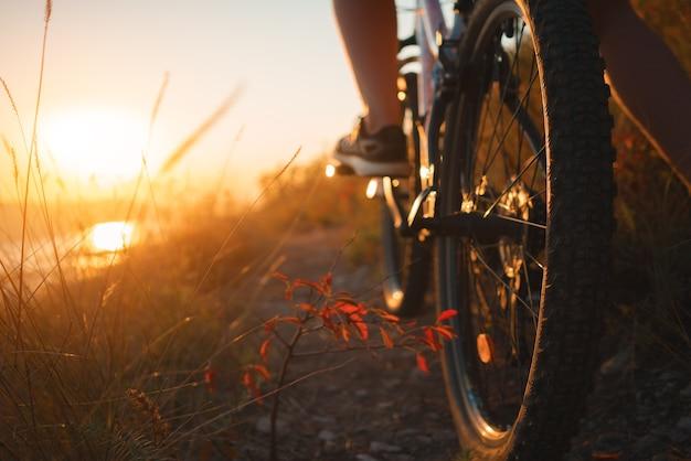 Sentiero per mountain bike