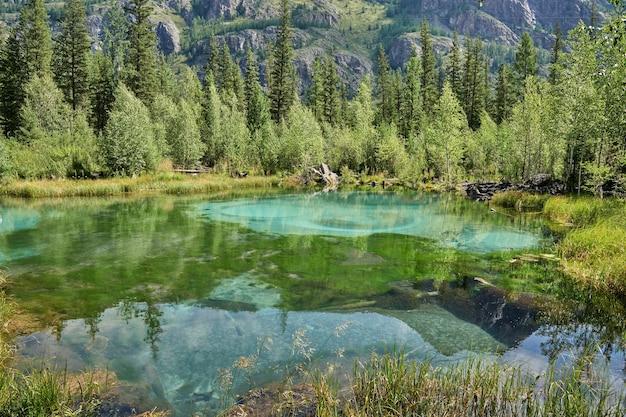 Lago di montagna blu geyser nella foresta. altai