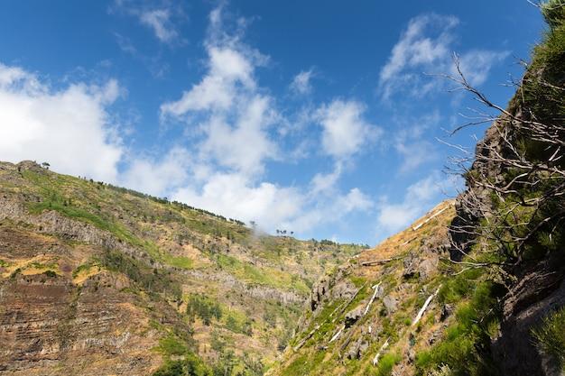 Canyon di montagna