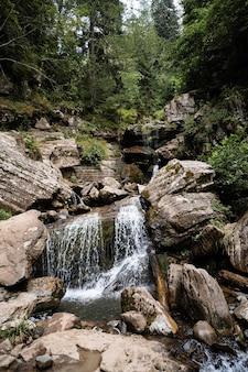 Torrente di montagna che scorre attraverso la foresta autunnale