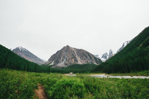 Mountain creek nella valle contro montagne giganti e cime innevate. flusso di acqua nel ruscello contro il ghiacciaio. vegetazione ricca e foresta di altopiani.