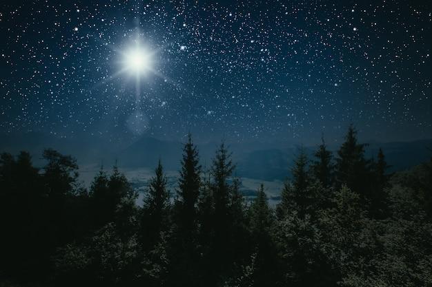Foresta di montagna di notte, cielo con le stelle