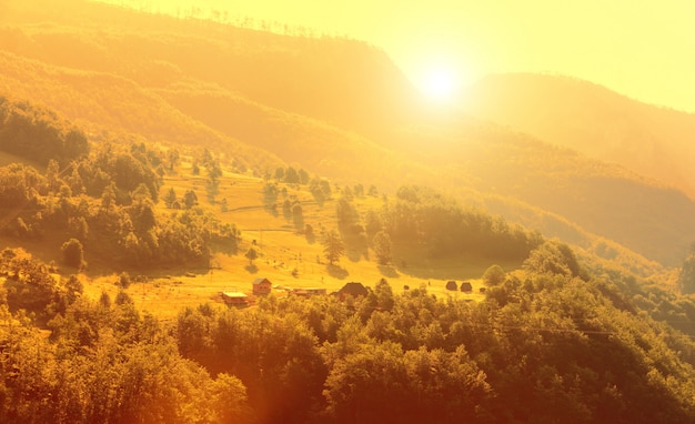 Montagna e paesaggio verde del montenegro
