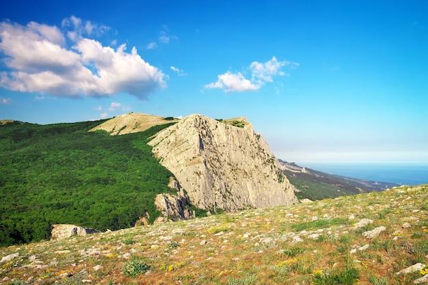 Paesaggio di montagna. composizione della natura.