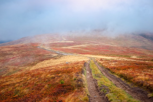 Le colline del paesaggio della montagna all'autunno hanno coperto le foglie del tappeto rosso