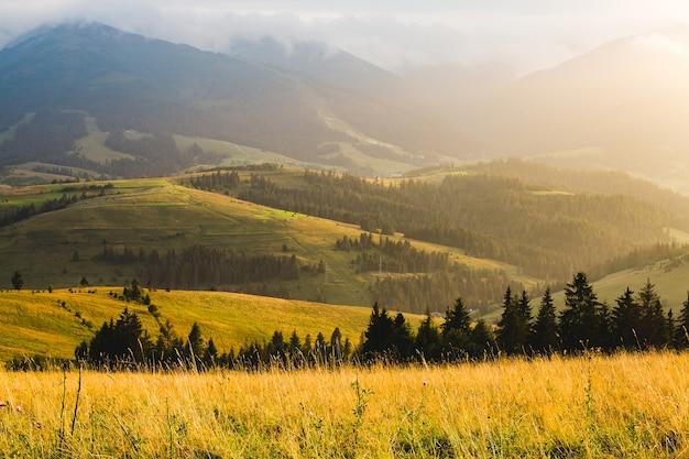 Paesaggio di montagna e prato illuminato dal sole al tramonto