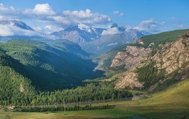Paesaggio di montagna. verde estivo, giornata di sole.