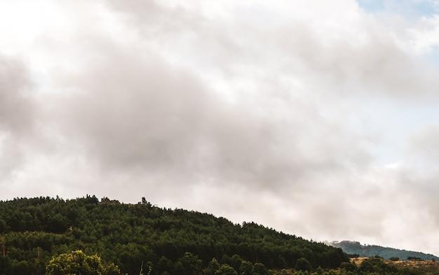 Paesaggio di montagna con foresta verde e cielo grigio in una giornata autunnale nuvolosa e piovosa