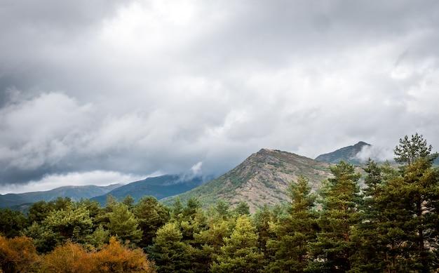 Paesaggio di montagna con alberi di pino in una giornata autunnale nuvolosa e piovosa