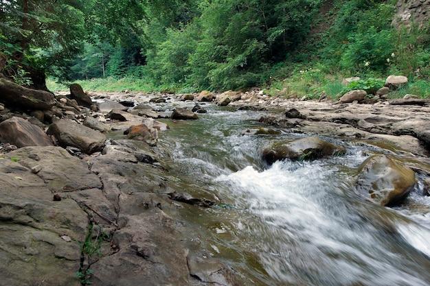 Il fiume di montagna scorre attraverso la foresta
