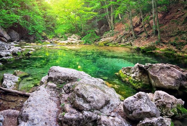 Fiume di montagna in foresta e terreno di montagna. crimea, il grand canyon