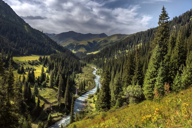 Fiume di montagna in montagne verdi