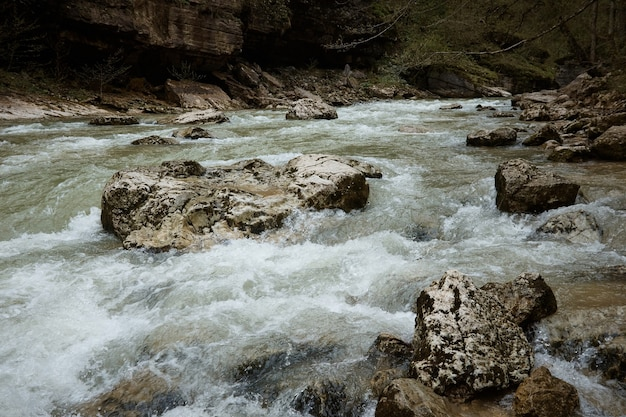 Onde impetuose del fiume di montagna, rocce e rocce nel fiume, acqua agitata, paesaggio