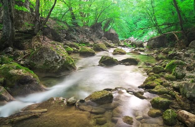 Fiume di montagna in primavera. un flusso d'acqua nella foresta e nel terreno di montagna