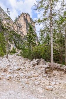 Ruscello di montagna che scorre nel lago di braies nelle alpi italiane