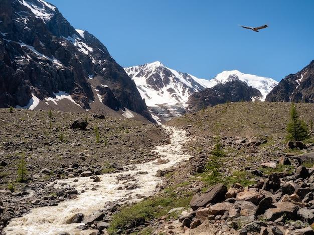 Ruscello di montagna scorre giù da un ghiacciaio. bellissimo paesaggio alpino con un fiume veloce. il potere della natura maestosa degli altopiani.