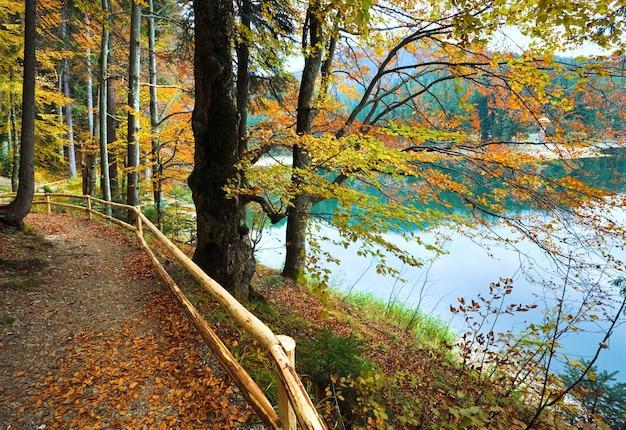 Vista sul lago di montagna synevir attraverso i ramoscelli d'autunno