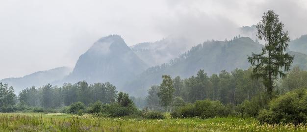 Vista sulle montagne in una piovosa giornata estiva, panorama