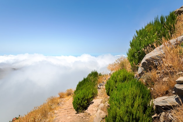 Montagne nel paesaggio di nuvole