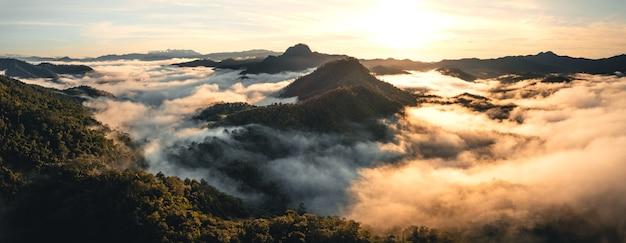 Montagne e nebbia mattutina nella foresta tropicale invernale