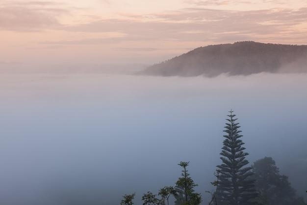 Montagne nella nebbia mattutina.